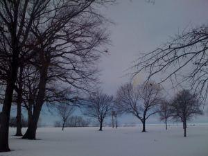 Lakewood Park