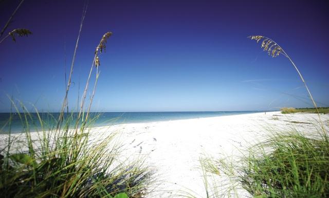 fl beach 1